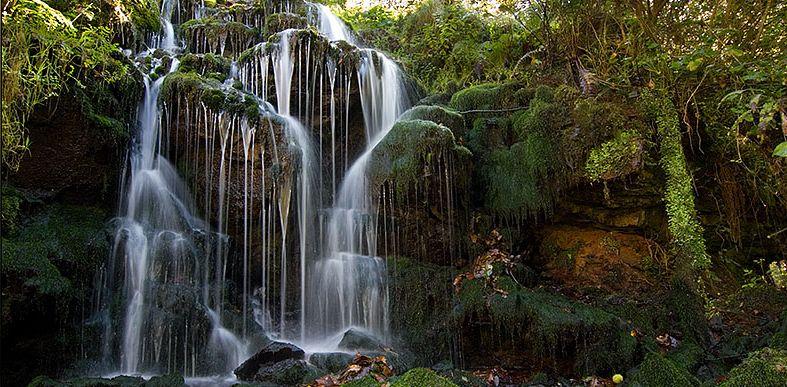 Fuente obaya Asturias