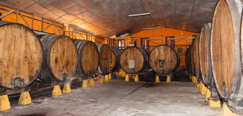 Visita Llagar Sidra asturiana